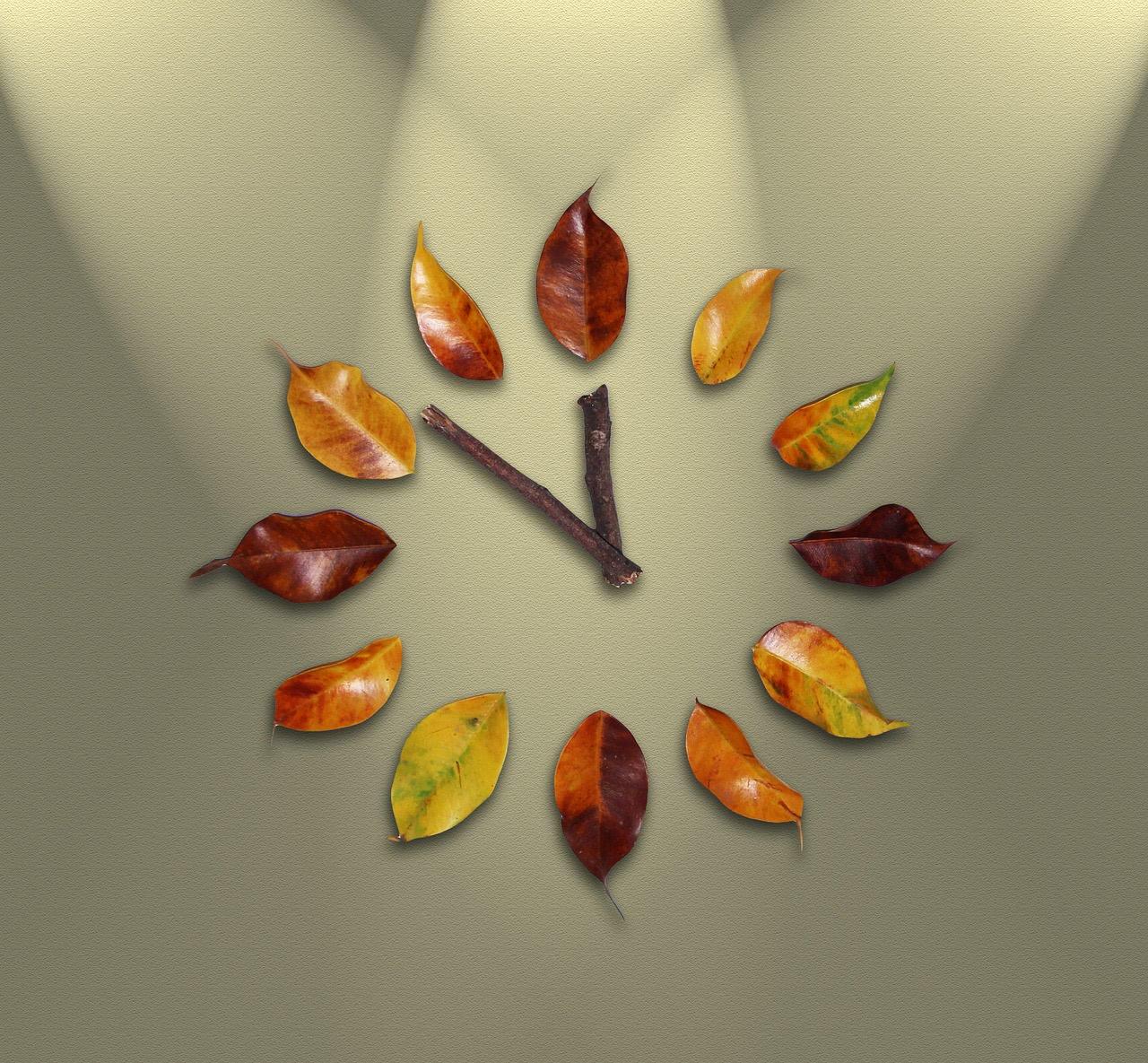 Bild Uhr aus Blättern und Zweigen