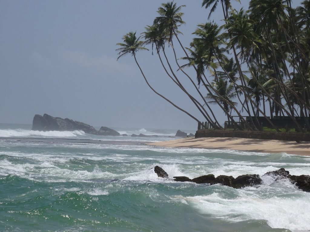 Bild Strand mit Kokospalmen