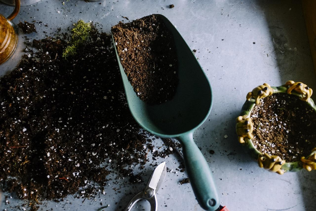 Chilipflanzen-Erde