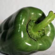 Bild grüne Paprika