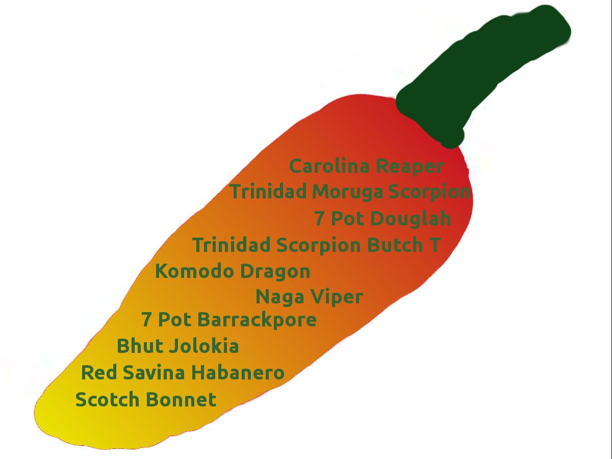 Scharfe Chili Top Ten