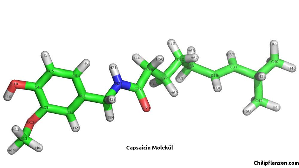 Capsaicin Molekül