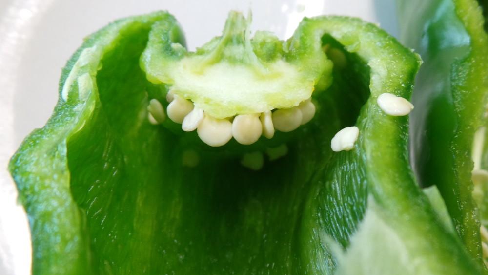 Bild Poblano Fruchtfleisch