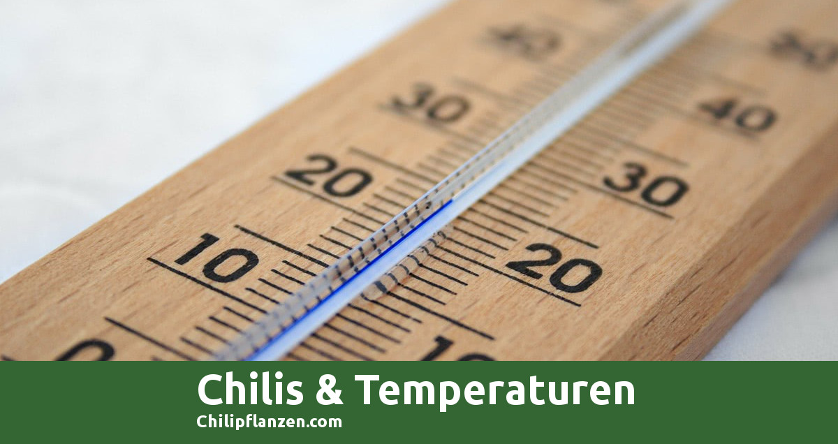 Bild Chili Temperaturen FB